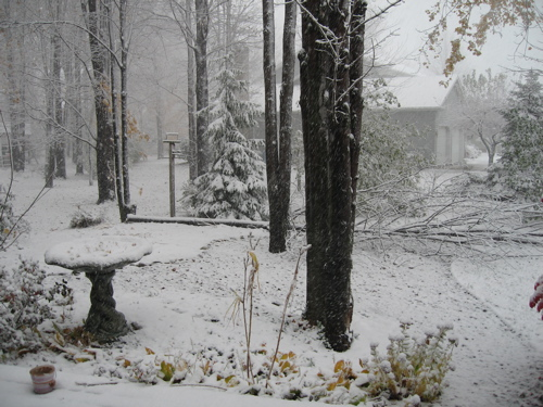2006 First Snow