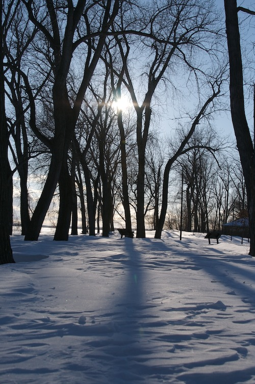 Late Afternoon Presque Isle Winter